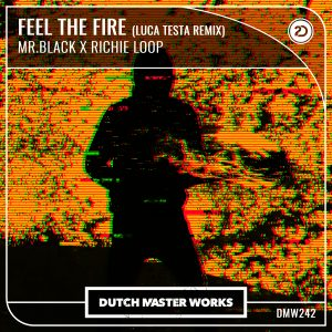 MR.BLACK & Richie Loop - Feel The Fire ( Luca Testa Remix) artwork